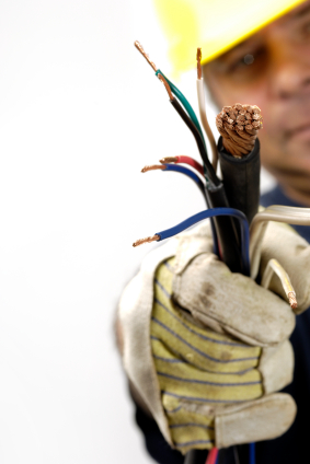 200/' 24 AWG 12 Pair PE89 Aluminum Shield Telephone Direct Burial Cable Black